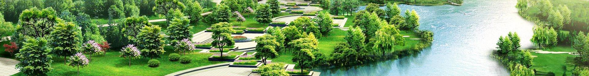 佛甲草绿雕