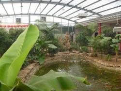 小型生态酒店