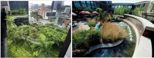 郑州绿色大地园林景观工程,园林景观设计,园林景观绿化