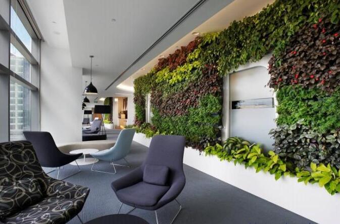 植物墙,郑州城市绿雕施工工程,郑州园林绿化公司