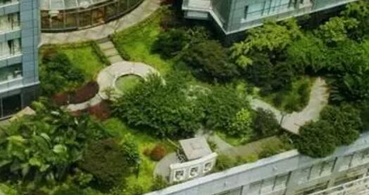 郑州别墅庭院设计,  郑州园林景观设计,屋顶绿化