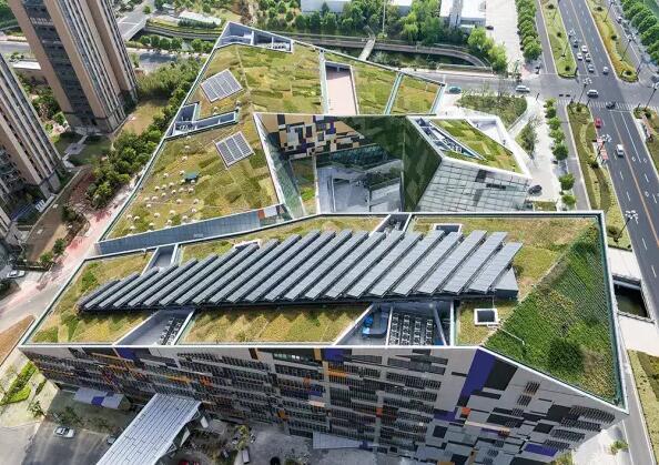 郑州betway必威|欢迎光临绿化公司讲述betway必威|欢迎光临绿化重要的意义