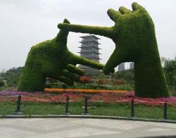公共庭园绿化有哪些特点及要求?